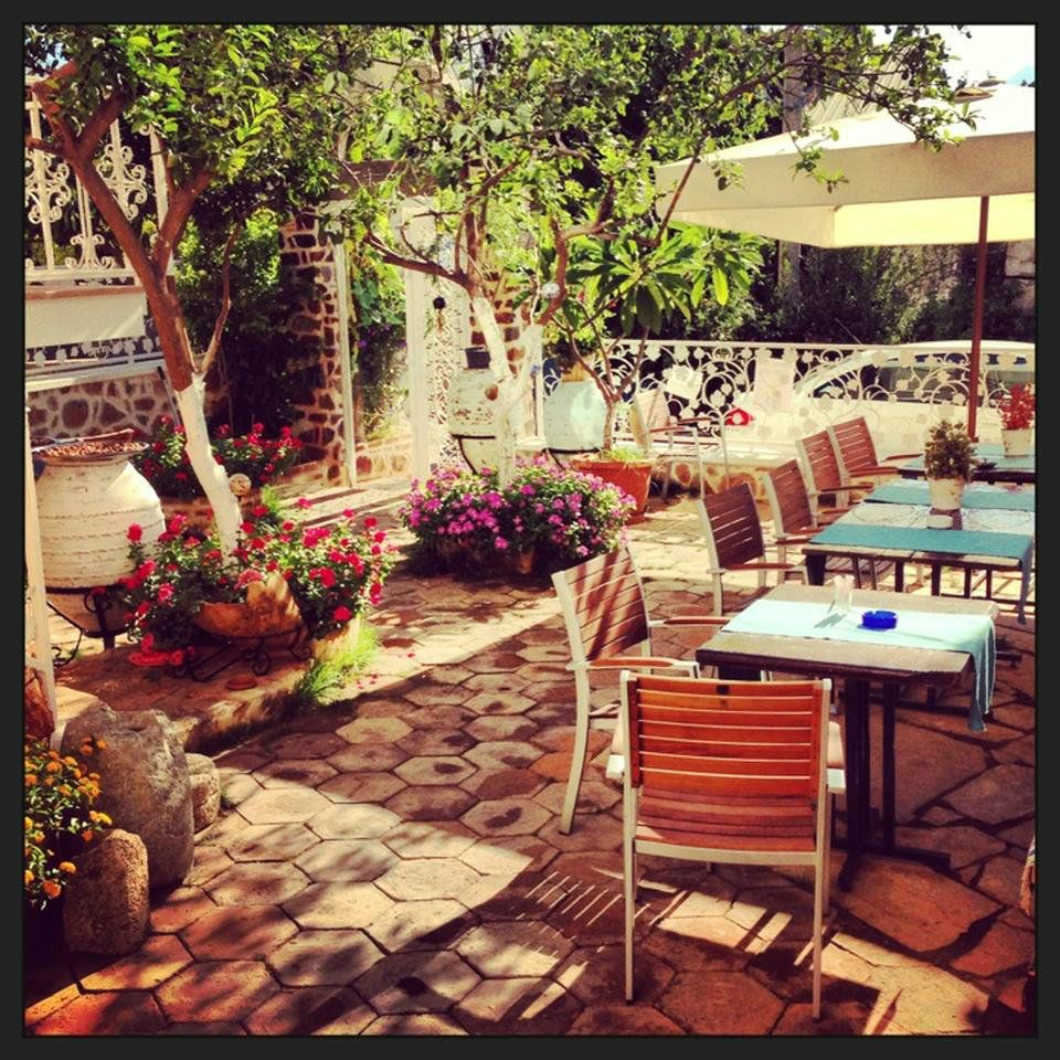 lemon tree restaurant lemon villa boutiqe hotel alanya